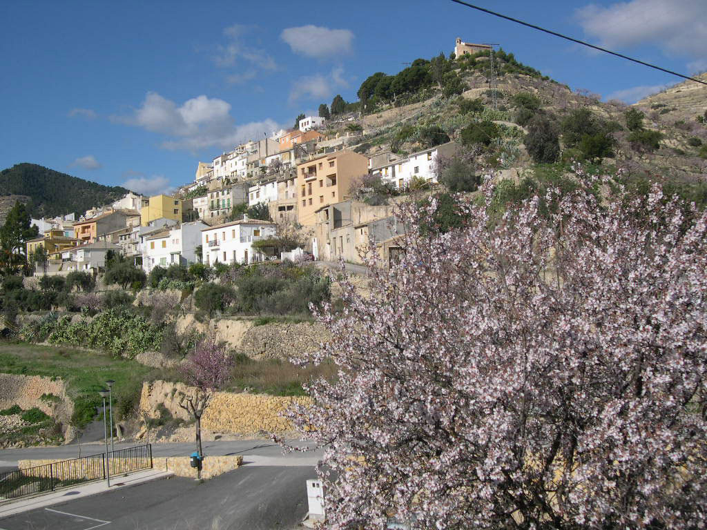 Sellavillage-and-almondblossom